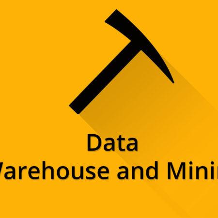 Data Warehousing and Mining Notes